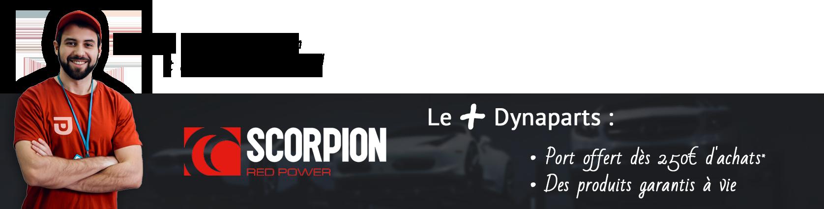 Bannière Scorpion